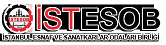 İstanbul Esnaf ve Sanatkarlar Odaları Birliği / İSTESOB